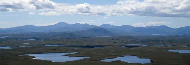 wetlands-banner